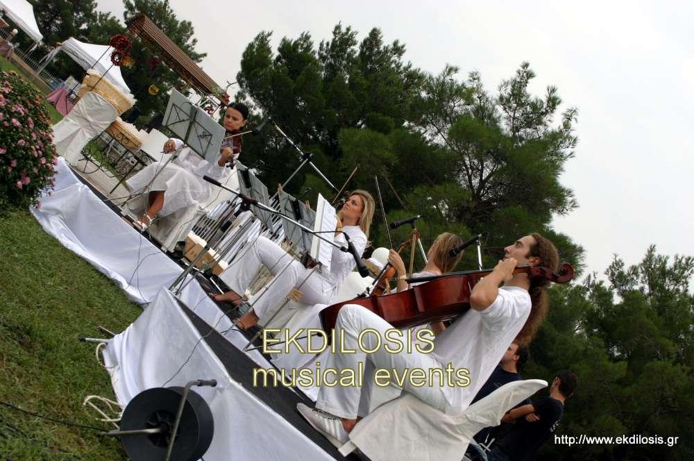 γάμος κτήμα μυρωνίδη & βιολιά υποδοχής